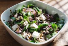 Jak wybrać najlepszą dietę wegańską